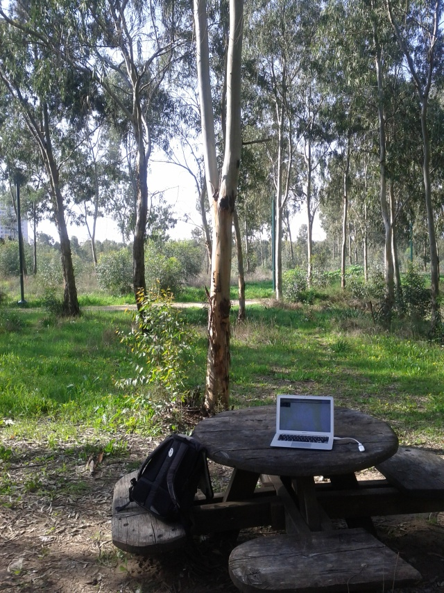 Laptop in the nature